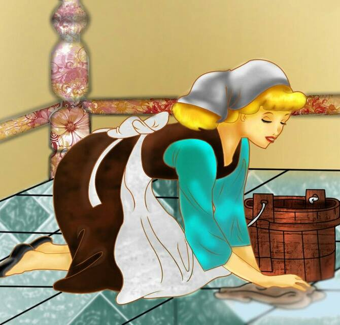 Cinderalla - Generations Carpet Cleaning