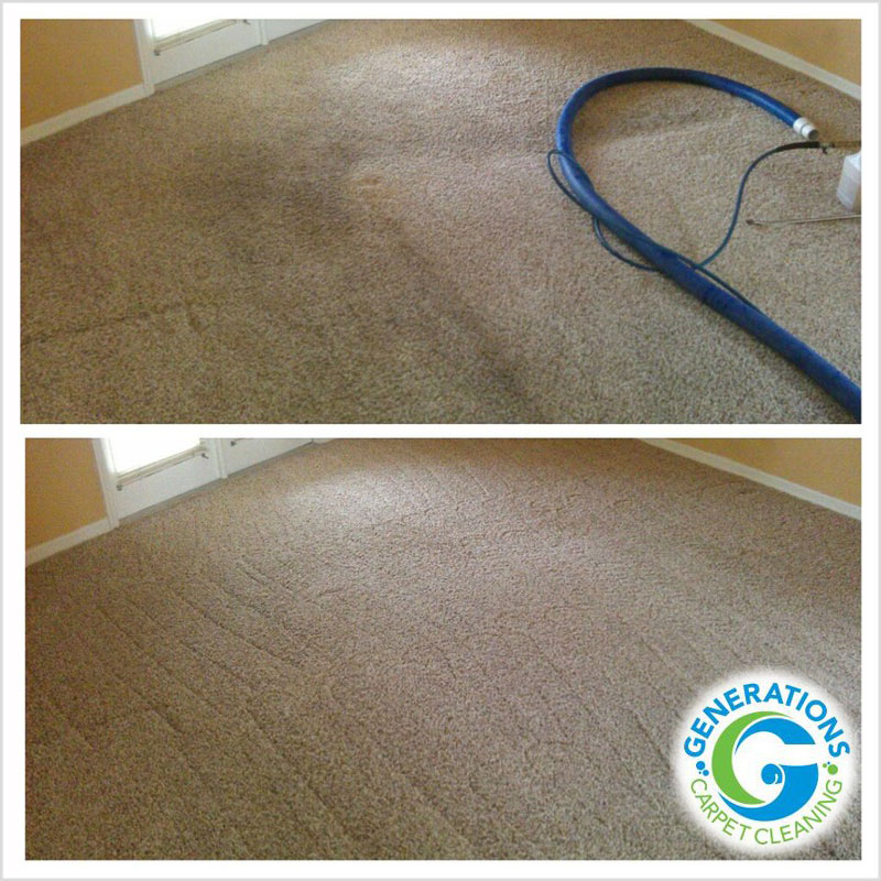 Daily Grime - carpet cleaning - Generations Carpet Cleaning