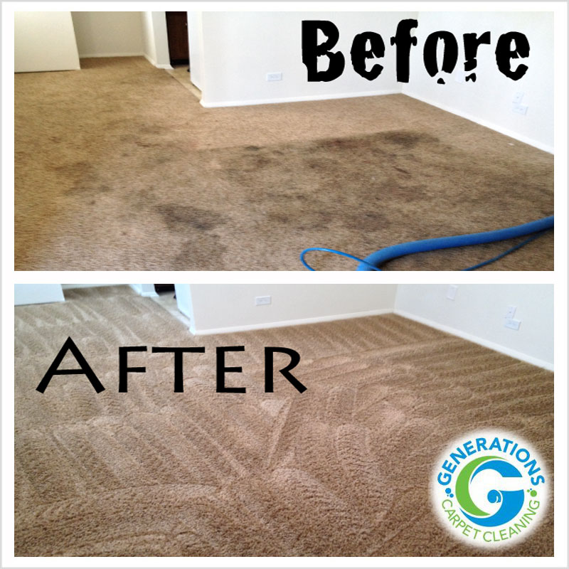 stain removal - Generation Carpet Cleaning