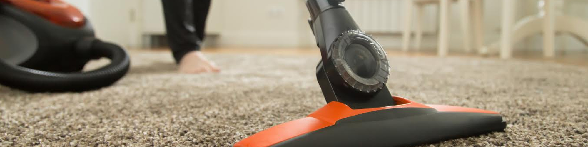 Palm Harbor Carpet Cleaning