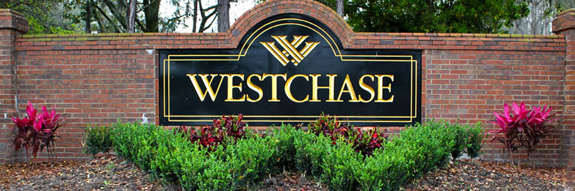 Westchase carpet cleaning - Generations Carpet Cleaning