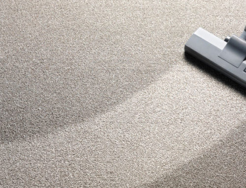 How Do I Maintain My Carpet After a Professional Carpet Cleaning?